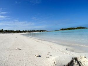 The beaches at Shroud Cay go on for EVER!